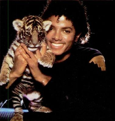 cute with tiger